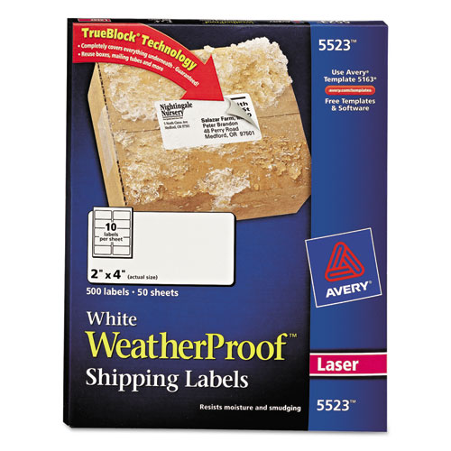 Weatherproof Shipping Labels, 2 x 4, 500/Pack